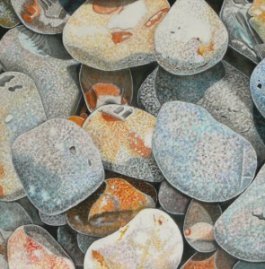 Pebbles, Norfolk 3