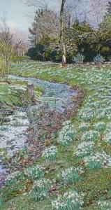 Snowdrops, Spring Awakening