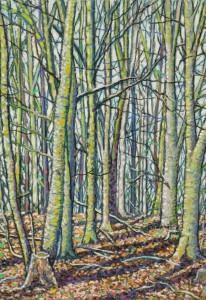 Trees, Canwick Woods