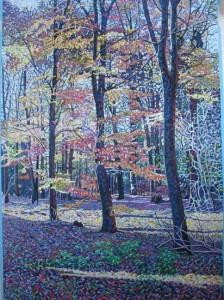 Autumn, Canwick Woods