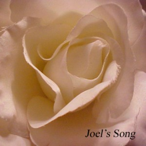 joels song cover