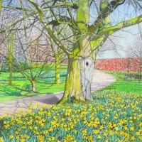 Daffodils, Branston