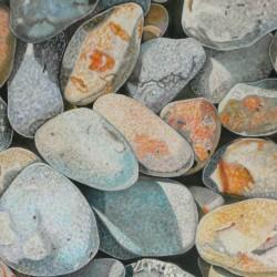 Pebbles, Norfolk 1